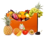 Foodbox Fruitbox (groot)